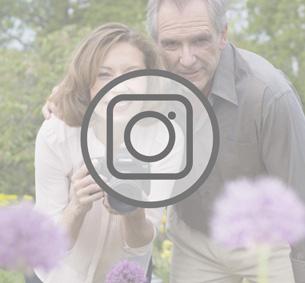 Widget Instagram 303x283